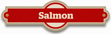 Promotions- salmon